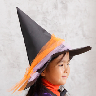 2witchs hat hc1708a
