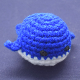 201608 whale2